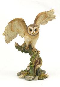 Veronese Owl