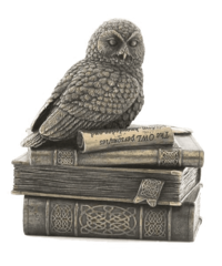 Veronese Snow Owl On Books Trinket Box